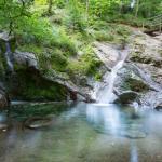 Trailrunning Ninglinspo Aywaille in de Ardennen